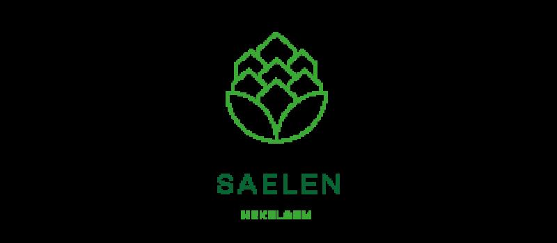 logo-saelen